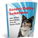 Review: Border Collie Geheimen (Henk Bakker)