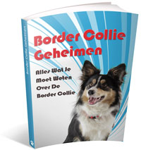 border collie geheimen review