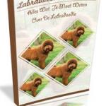 Review: Labradoodle Geheimen (Piet de Jong)
